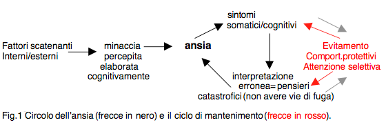 AnsiaCircolo